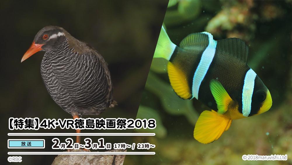 【特集】4K・VR徳島映画祭2018